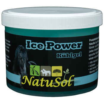 Ice Power 500 g - Kühlgel